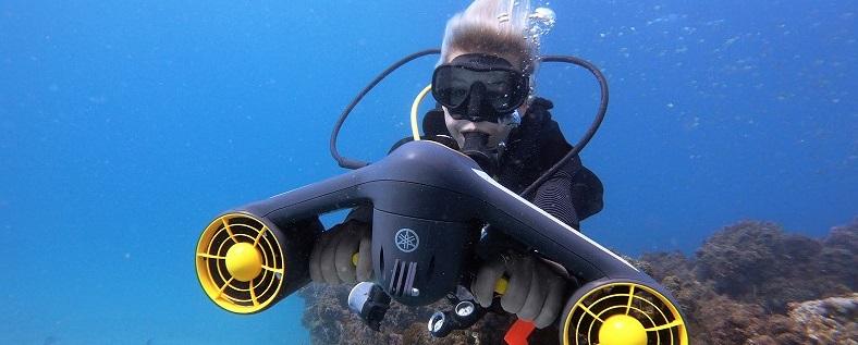 Seawing acuáticos